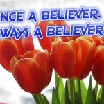 #TBT: Once a believer, always a believer?