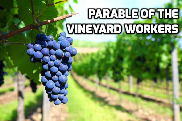 Parable of the Vineyard Workers | WednesdayintheWord.com