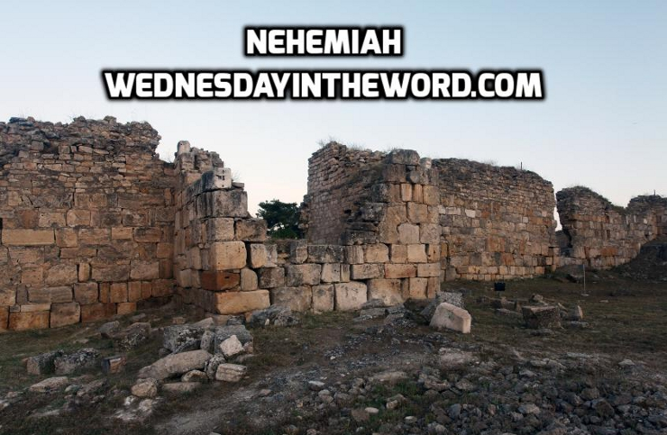 Nehemiah | WednesdayintheWord.com