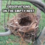 #TBT Observations on the empty nest