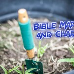 Bible Maps & Charts | WednesdayintheWord.com