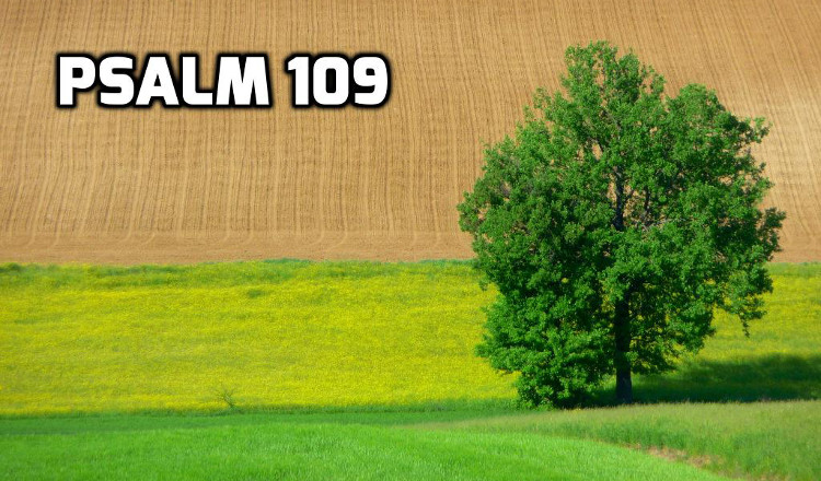 Psalm 109 | WednesdayintheWord.com