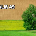 Psalm 49 The Folly of Trusting in Riches