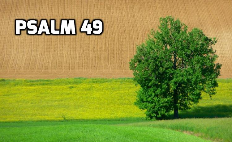 Psalm 49 | WednesdayintheWord.com
