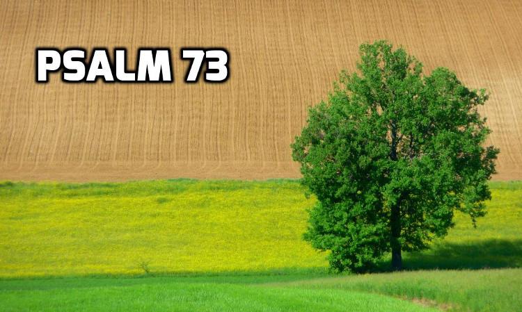 Psalm 73   WednesdayintheWord.com