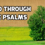 Read through the Psalms