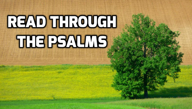 Read through the Psalms | WednesdayintheWord.com