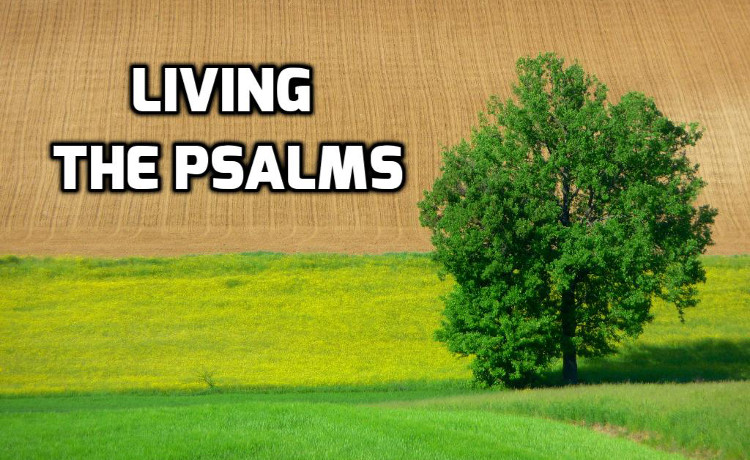 Living the Psalms | WednesdayintheWord.com