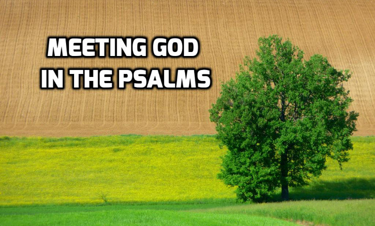 Meeting God in the Psalms | WednesdayintheWord.com