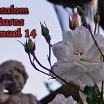 2 Samuel 14 Absalom Returns