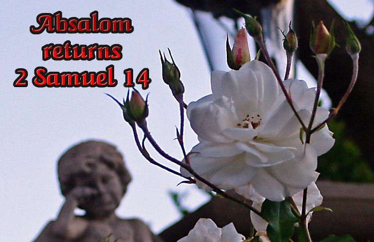 2 Samuel 14 Absalom Returns | WednesdayintheWord.com