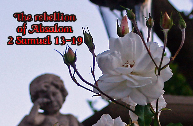 Rebellion of Absalom | WednesdayintheWord.com