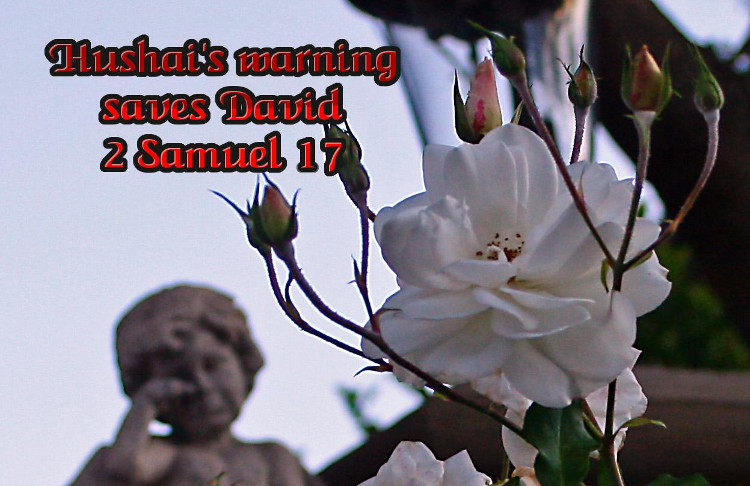 2 Samuel 17 Hushai's Warning Saves David | WednesdayintheWord.com
