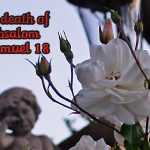 2 Samuel 18 The Death of Absalom