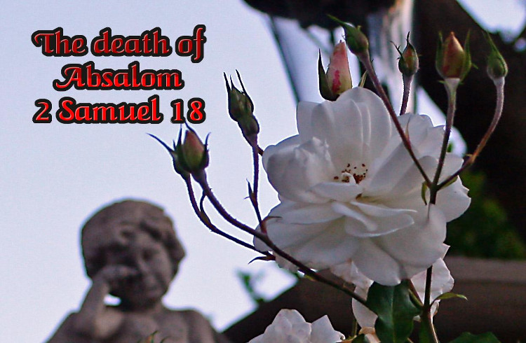 2 Samuel 18 The Death of Absalom | WednesdayintheWord.com