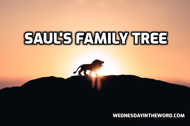 Saul's Family Tree | WednesdayintheWord.com
