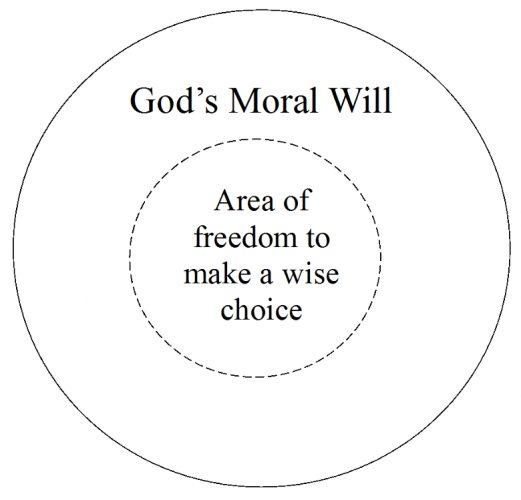 Understanding God's Will | WednesdayintheWord.com