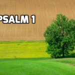 Psalm 1: The way of the Righteous and the Wicked