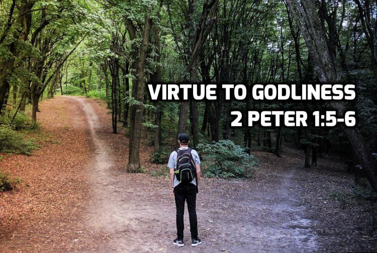 2 Peter 1:5-6 Virtue to Godliness | WednesdayintheWord.com