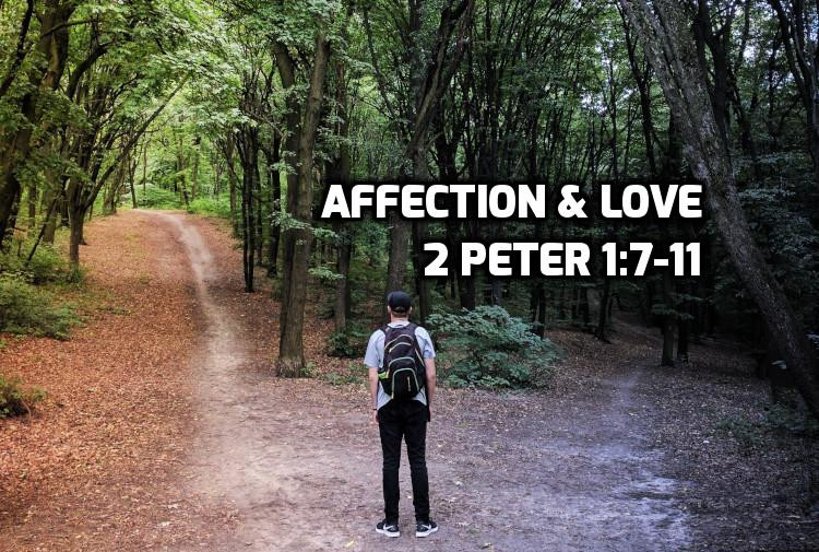 2 Peter 1:7-11 Brotherly affection & Love | WednesdayintheWord.com