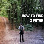 01 2 Peter 1:1-4 How to find Life