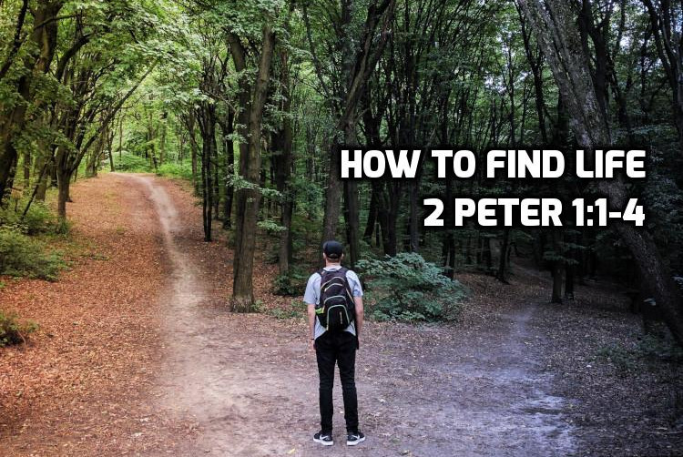 How to find Life 2 Peter 2:1-4 | WednesdayintheWord.com