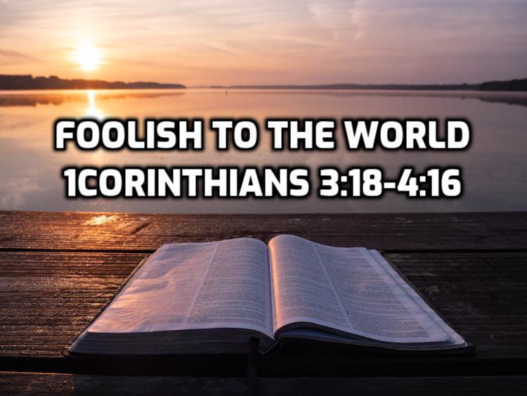 11 1Corinthians 3:18-4:16 Be foolish to the world | WednesdayintheWord.com