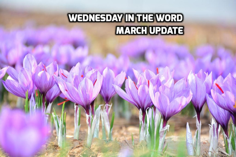 March 2019 Recap | WednesdayintheWord.com