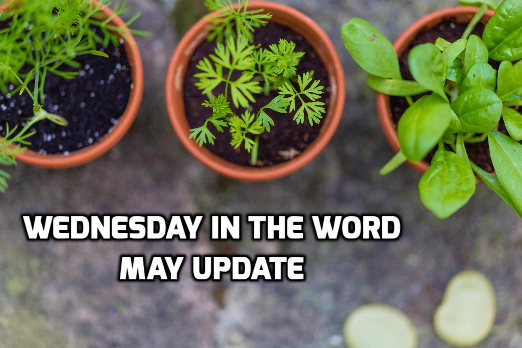 May 2019 Recap | WednesdayintheWord.com