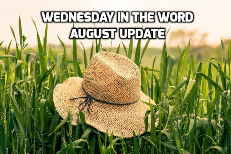 August 2020 Reflections  | WednesdayintheWord.com