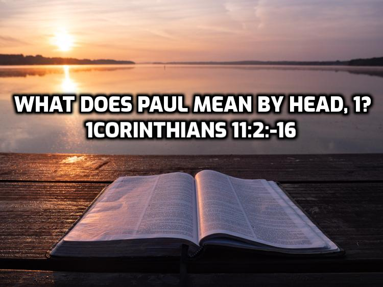 30 What does Paul mean by head in 1 Corinthians 11:2-16, part 1 | WednesdayintheWord.com