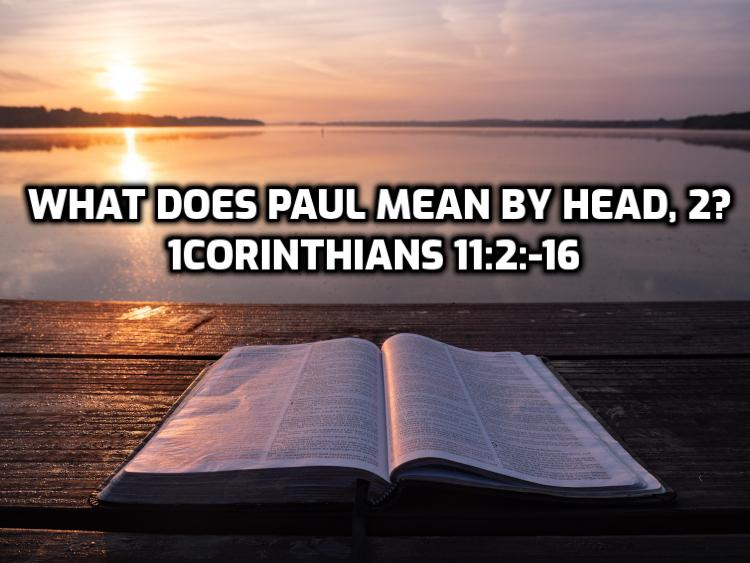 30 What does Paul mean by head, 2? | WednesdayintheWord.com