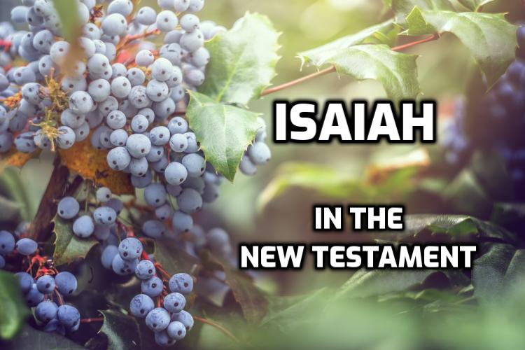 Isaiah in the New Testament | WednesdayintheWord.com