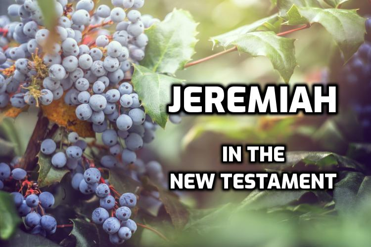 Jeremiah in the New Testament | WednesdayintheWord.com