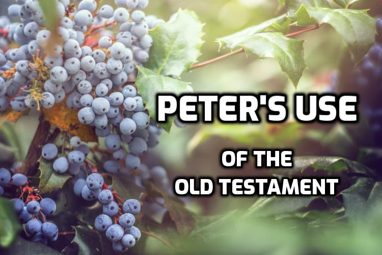 Peter's use of the Old Testament | WednesdayintheWord.com