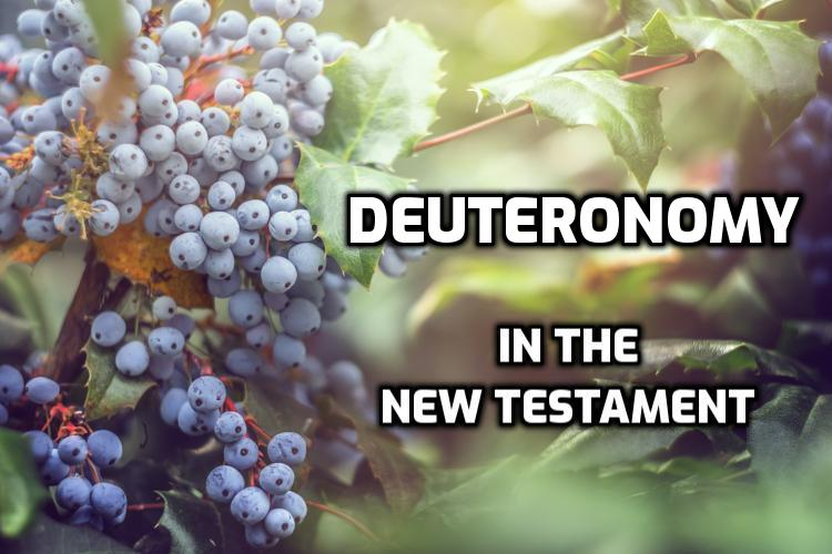 Deuteronomy quotations in the New Testament | WednesdayintheWord.com