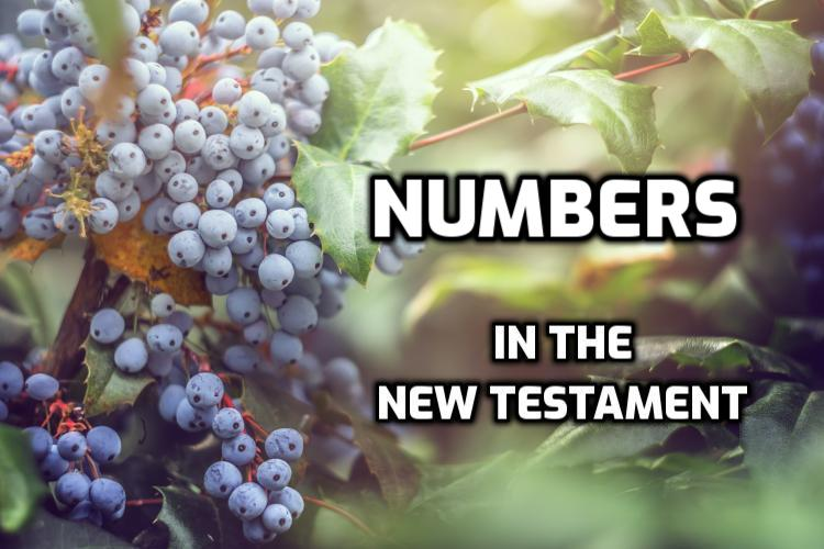 Numbers Quotes in the New Testament | WednesdayintheWord.com
