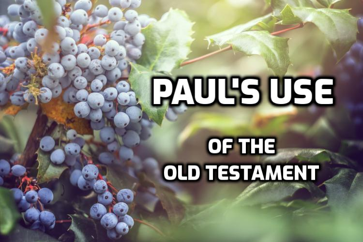 Paul's use of the Old Testament | WednesdayintheWord.com