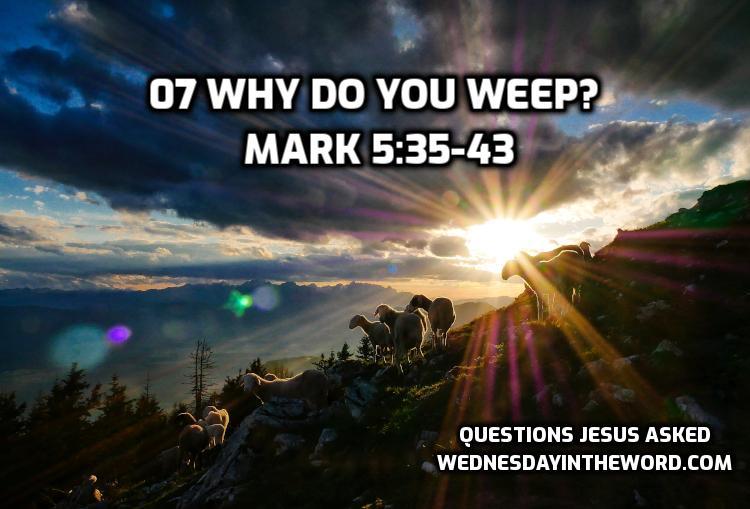 07 Why do you weep? Mark 5:35-43 | WednesdayintheWord.com