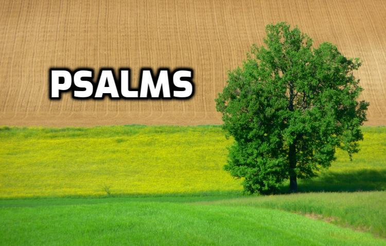 Psalms | WednesdayintheWord.com