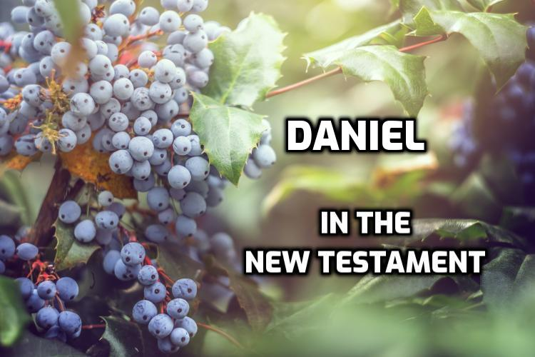 Daniel quotes in the New Testament | WednesdayintheWord.com