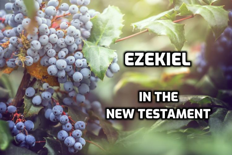 Ezekiel quotes in the New Testament | WednesdayintheWord.com