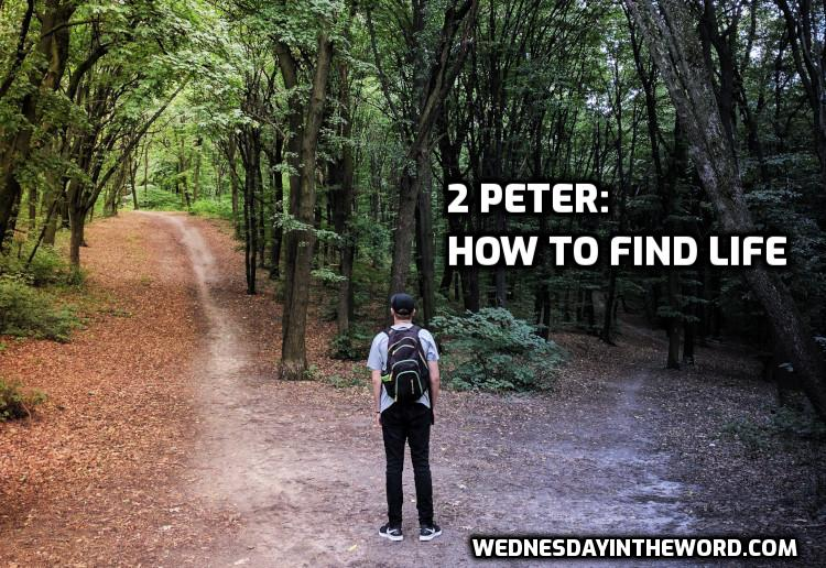 2 Peter: How to find life | WednesdayintheWord.com