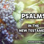 Psalms quoted in the New Testament
