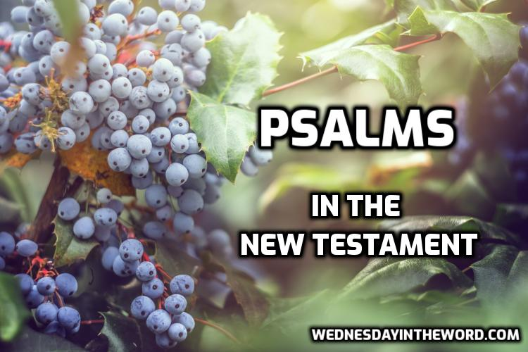 Psalms quoted in the New Testament | WednesdayintheWord.com