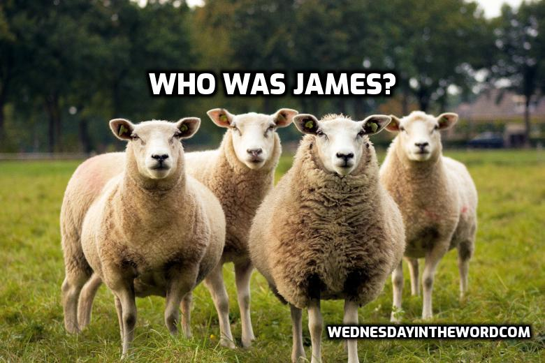 Who was James? | WednesdayintheWord.com