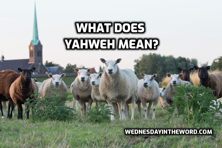 What does YAHWEH mean? | WednesdayintheWord.com