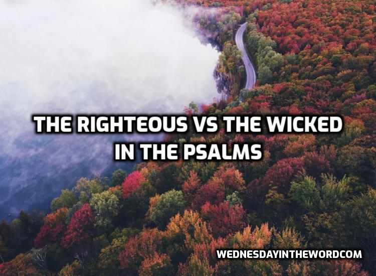 The Righteous vs. the wicked in the Psalms | WednesdayintheWord.com